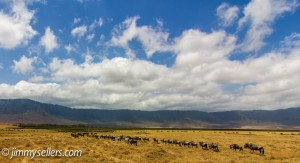 Africa-2013-2240