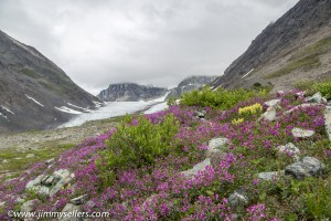 Alaska-2015-07-2377